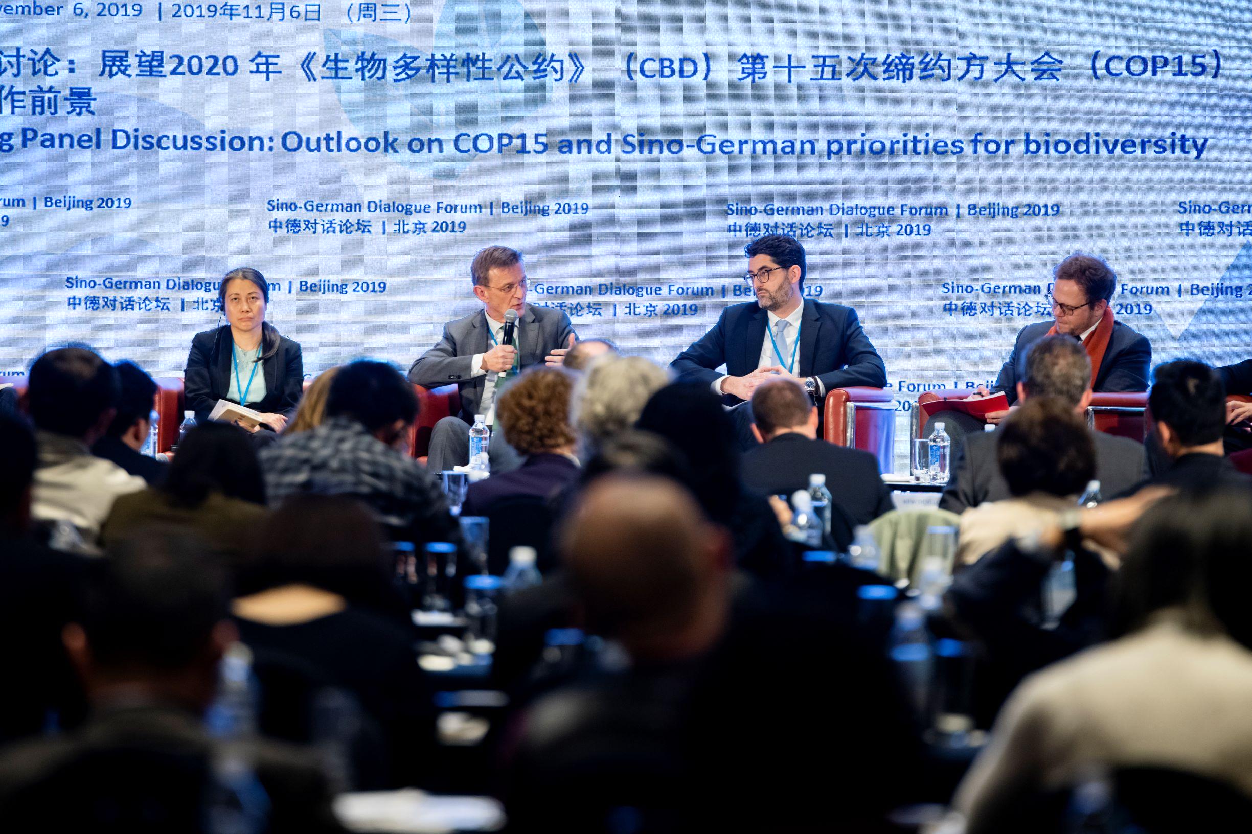 Sino-German Dialogue Forum